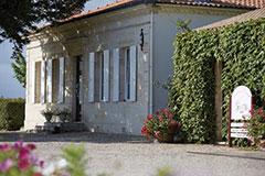 MÉDOC SCEA Château DAVID