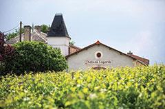 BLAYE Château LAGARDE